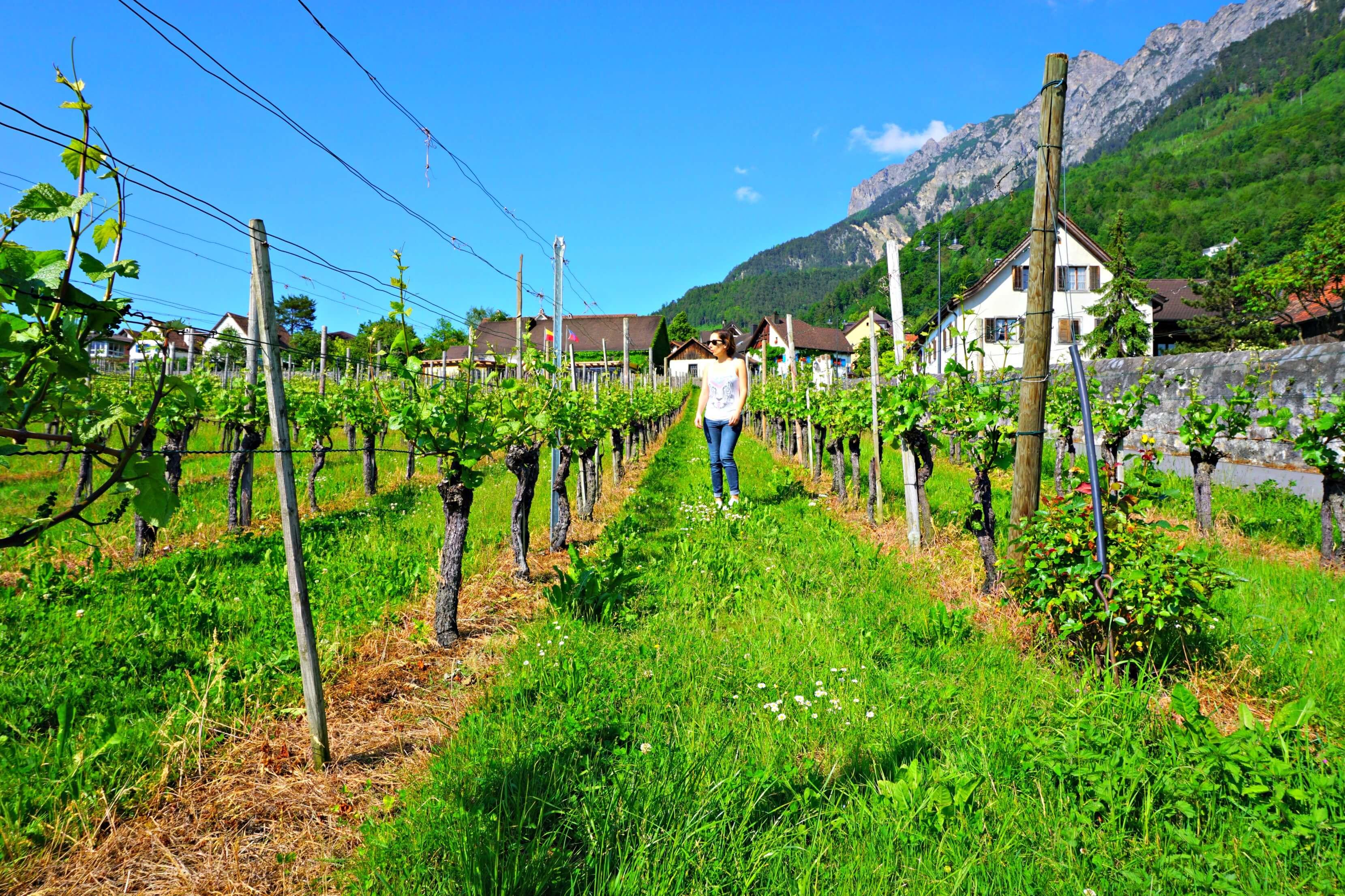 A day trip to Vaduz, Liechtenstein