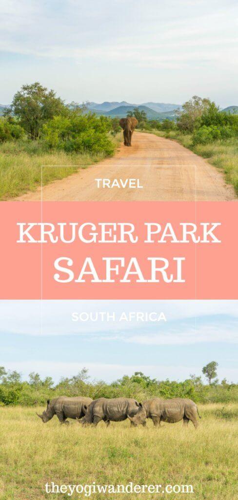 Kruger National Park safari: cost and tips - The Yogi Wanderer